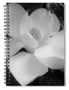 White - Magnolia - Beauty Spiral Notebook