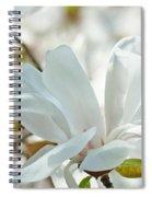 White Magnolia Tree Flower Art Prints Magnolias Baslee Troutman Spiral Notebook