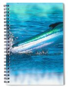 White Marlin -  From The Outer Banks Of North Carolina To Cape M Spiral Notebook