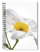 White Matilija Poppy On White Spiral Notebook