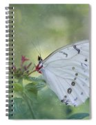 White Morpho Butterfly Spiral Notebook