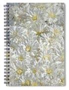 White Mums Spiral Notebook