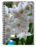 White Narcissi Spring Flower 2 Spiral Notebook