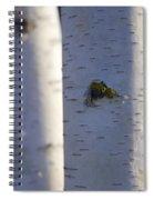 White On Blue Spiral Notebook