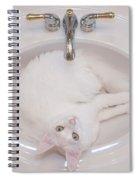 White On White 2 Spiral Notebook