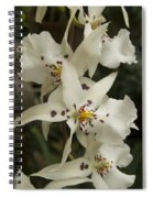 White Orchids 2 Spiral Notebook