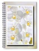 White Orchids Framed Spiral Notebook