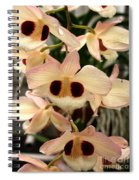 White Orchids With A Hint Of Pink Spiral Notebook