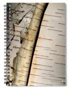 White Paper Birch Tree Bark Spiral Notebook