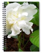 White Peonia Spiral Notebook