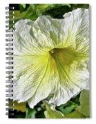 White Petunia - Solanaceae Spiral Notebook