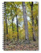 White Pine Hollow Spiral Notebook