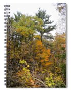 White Pine Hollow State Forest Spiral Notebook