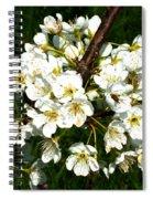 White Plum Blossoms Spiral Notebook