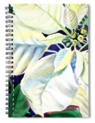 White Poinsettia Plant Spiral Notebook