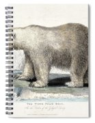 White Polar Bear On Ice Floe Spiral Notebook