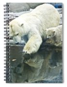 White Polar Bear With Baby Spiral Notebook