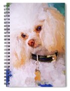 White Poodle Spiral Notebook