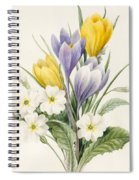 White Primroses And Early Hybrid Crocuses Spiral Notebook