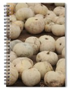 White Pumpkins Spiral Notebook