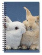 White Rabbit And Sandy Rabbit Spiral Notebook