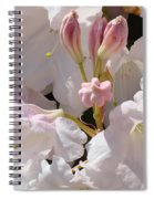 White Rhodies Pink Rhododendrons Flowers Art Prints Canvas Botanical Baslee Troutman Spiral Notebook