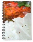 White Rhododendron Flowers Botanical Garden Prints Spiral Notebook