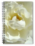 White Rose Art Prints Summer Sunlit Roses Baslee Troutman Spiral Notebook