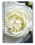 White Rose Bloom Spiral Notebook