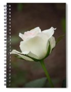 White Rose Bud 2 Spiral Notebook