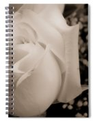 White Rose Bw Fine Art Photography Print Spiral Notebook
