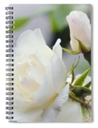 white Roses -2- Spiral Notebook
