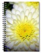 White Ruffles Spiral Notebook