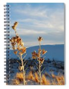 White Sands Yucca Row Spiral Notebook