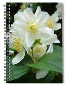 White Spring Blossom Spiral Notebook
