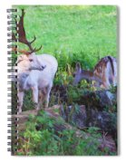 White Stag And Hind Spiral Notebook