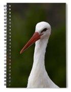 White Stork 5 Spiral Notebook