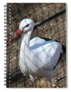White Stork Spiral Notebook