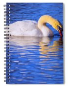White Swan Drinking Water In A Pond Spiral Notebook