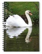 White Swan In Belgium Park Spiral Notebook