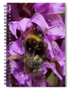 White-tailed Bumblebee On Southern Marsh Orchid Spiral Notebook