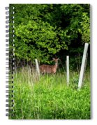 White Tailed Deer Spiral Notebook