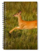 White-tailed Doe Leaping Spiral Notebook