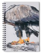 White Tailed Sea Eagle Spiral Notebook