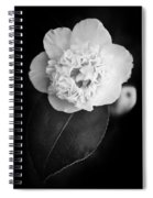 White Tenderness Spiral Notebook