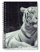 White Tiger 16 Spiral Notebook