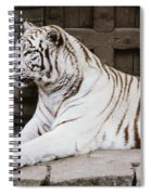 White Tiger Spiral Notebook