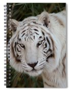 White Tiger Portrait Spiral Notebook