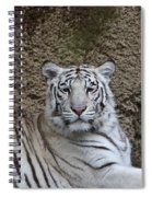 White Tiger Resting Spiral Notebook