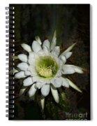 White Torch Cactus  Spiral Notebook